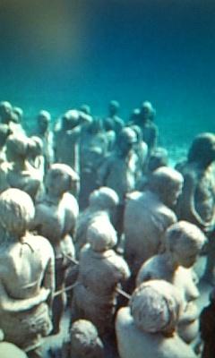 ゆったり海中博物館♪